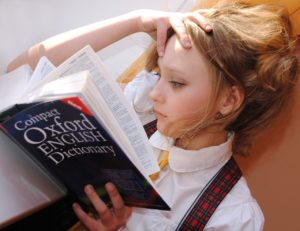 szótár - dictionary