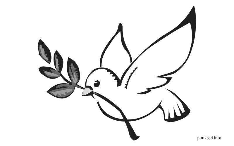 Pünkösd színező - galamb